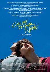 Ver Call Me by Your Name 2017 Online