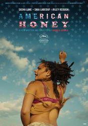 Ver American Honey 2016 Online